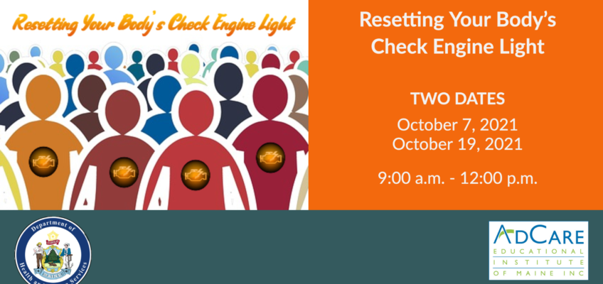Resetting Your Body's Check Engine Light
